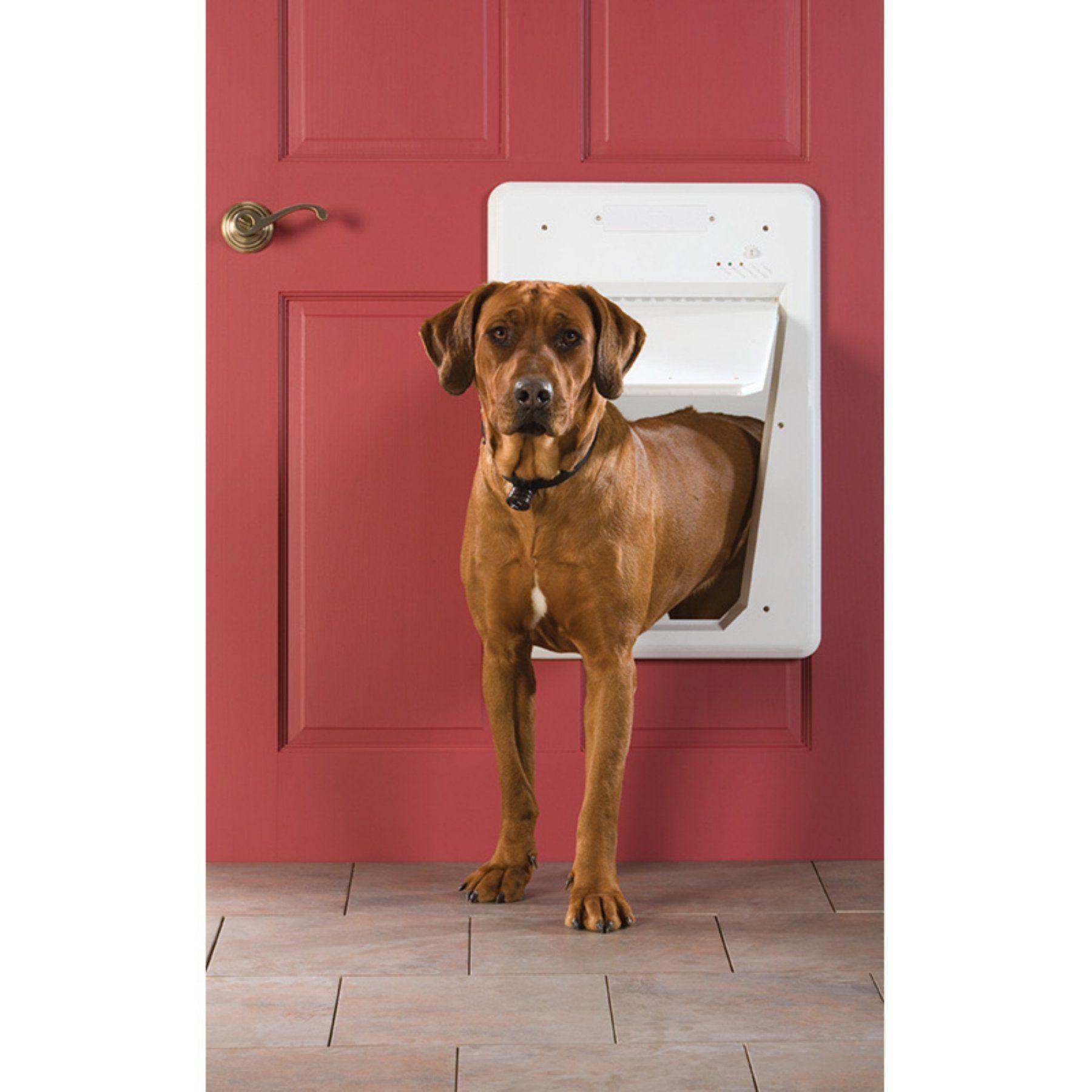 Petsafe Smart Door Storm Door Dog Door Ppa11 10711 Pinterest