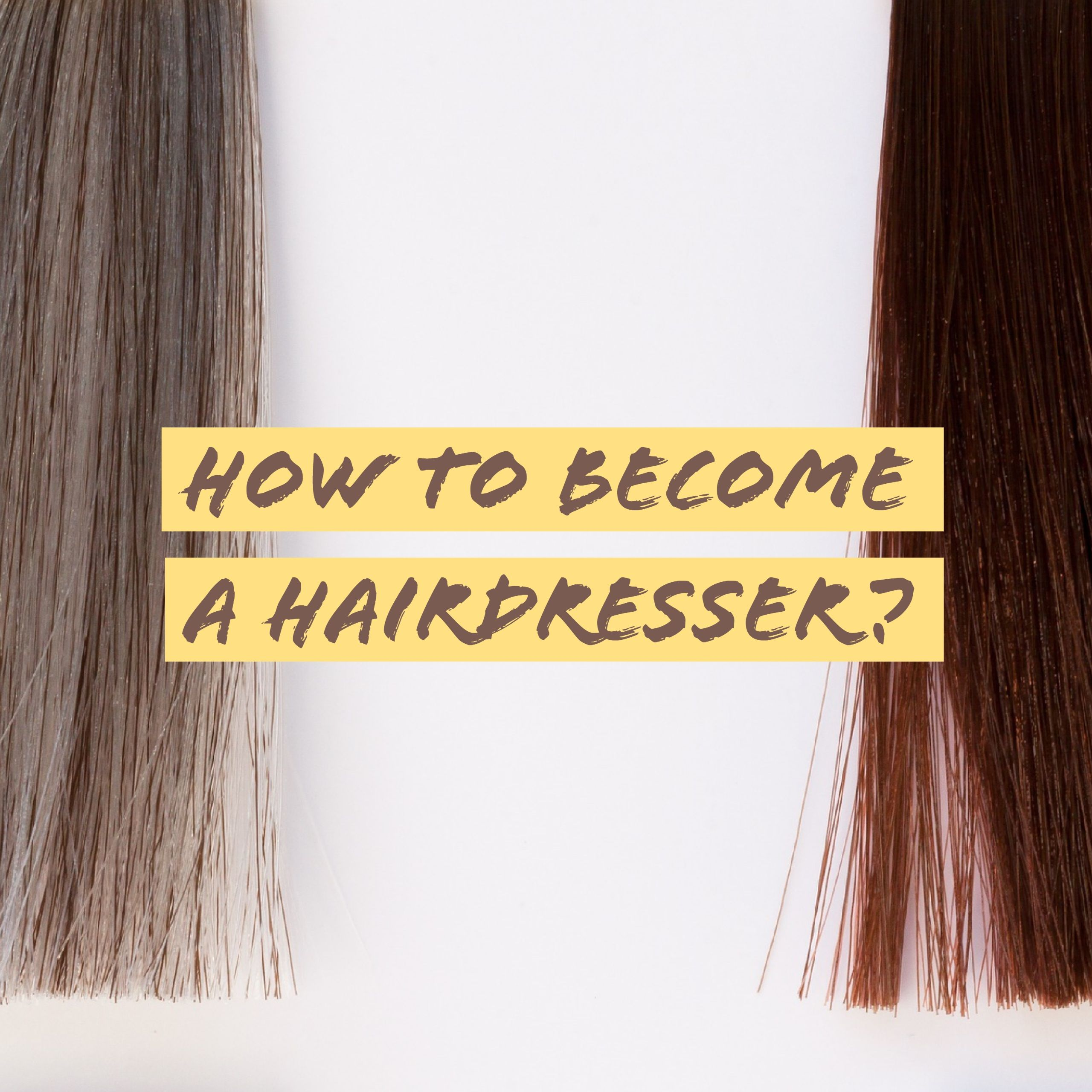 how to start as a hairstylist