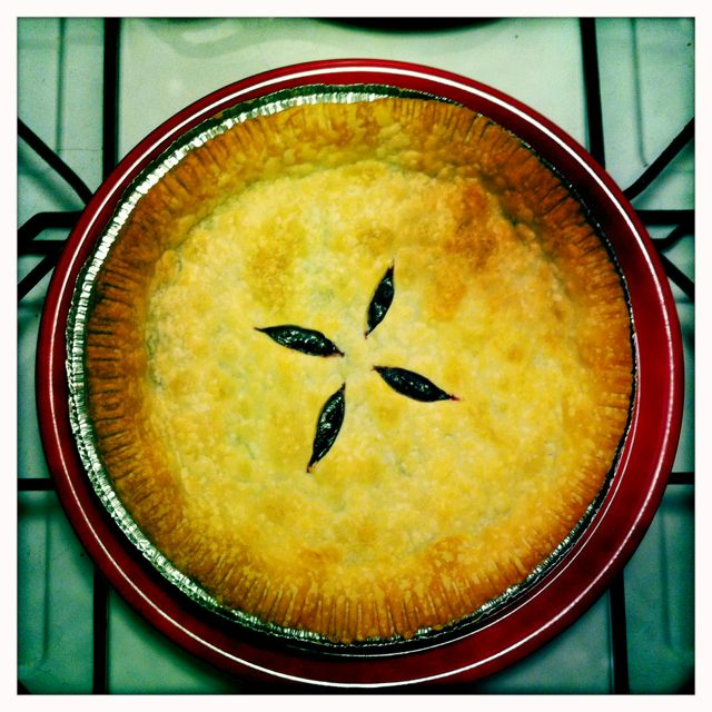 Warm huckleberry pie - fresh out of the oven. My first pie- made it last night ;)