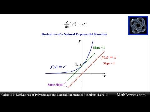 Calculus I Derivatives of Polynomials and Natural Exponential