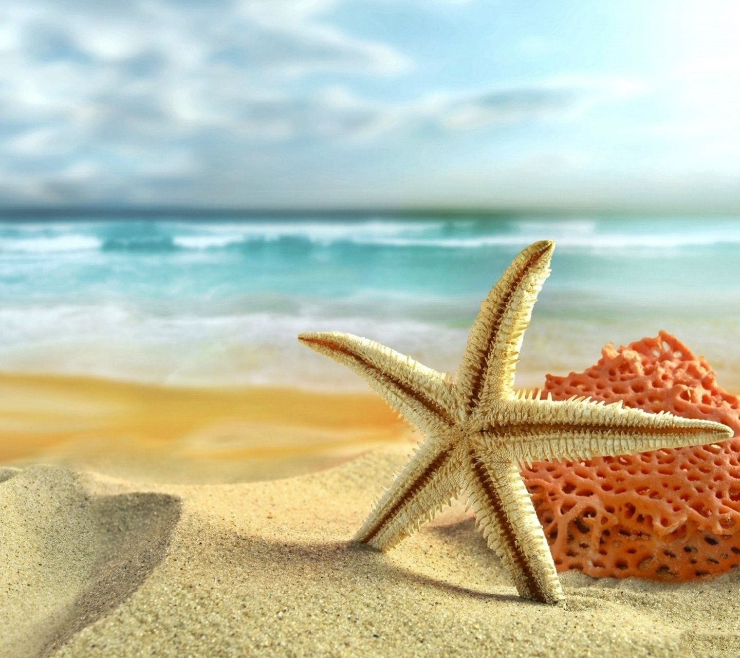 Beach Hd Wallpaper Android Places Visit Pinterest