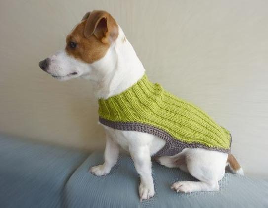 Amigurumi Lion Perritos : Zona de manualidades: como hacer ropa para perros a crochet tricot