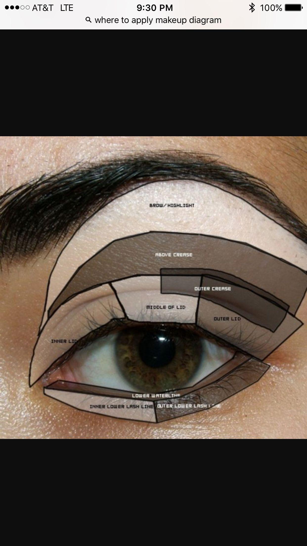Where To Put Eyeshadow Makeup Pinterest Makeup Eye Makeup And