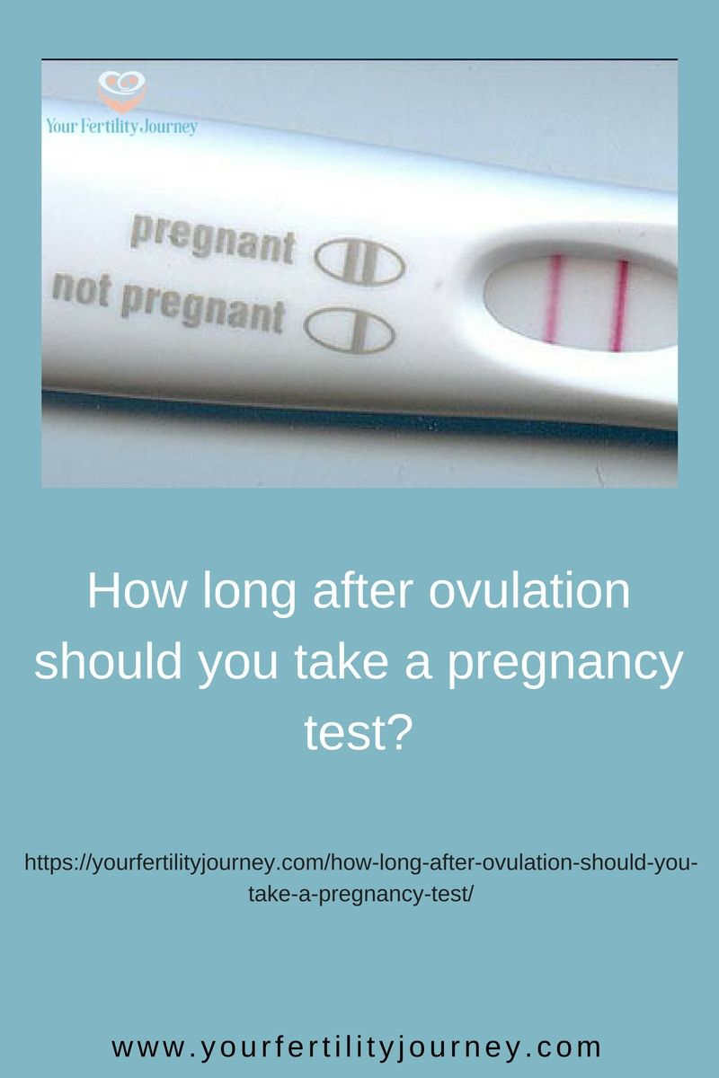 Can you still get pregnant 2 days after ovulation