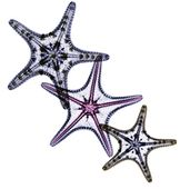Starfish design