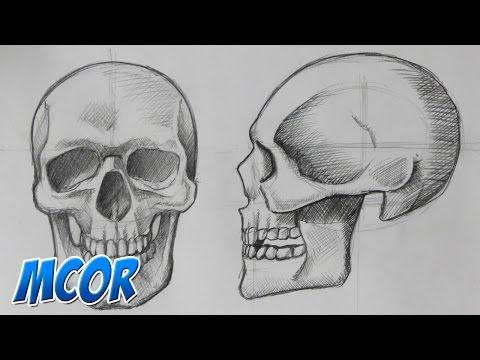 Como Dibujar el Craneo de Frente y Perfil | Anatomia - YouTube ...