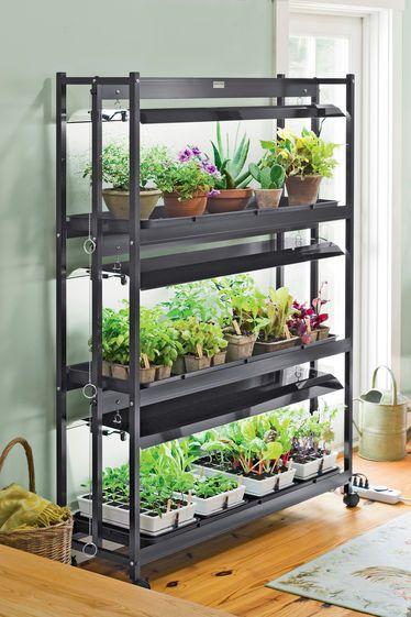 Photo of 3-Tier SunLite® Garden