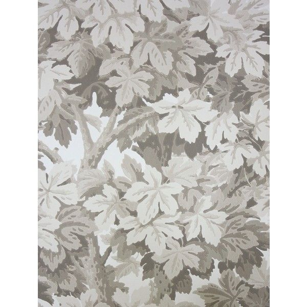 Cole & Son Wallpaper Great Vine Wallpaper (8.250 RUB) ❤ liked on Polyvore featuring home, home decor, wallpaper, leaf wallpaper, stone wallpaper, motivational wallpaper, leaf pattern wallpaper and leaves wallpaper