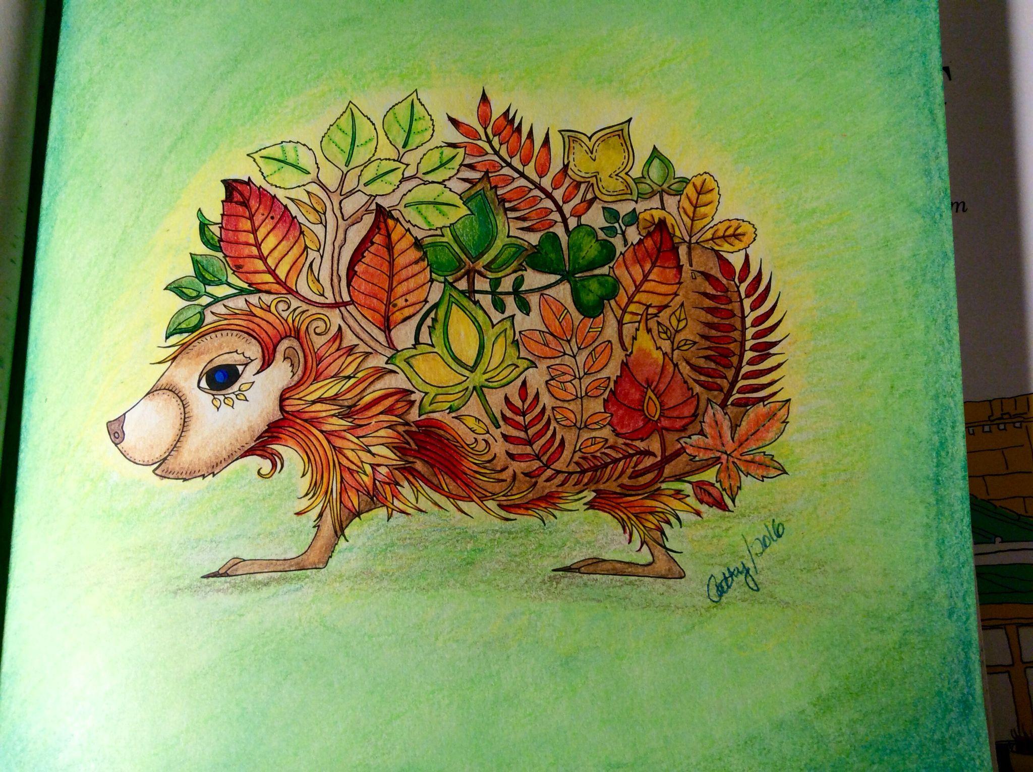 Hedgehog Enchanted Forest Johanna Basford Cathyc Pencil Crayons Coloring Book Art Enchanted Forest Coloring Johanna Basford Coloring Book