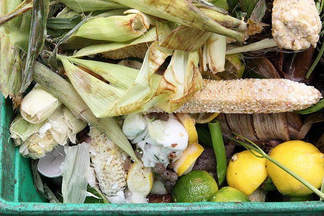 How To Make A Worm Farm Review - composting #wormfarming #wormfarm #composting #gardening #manure