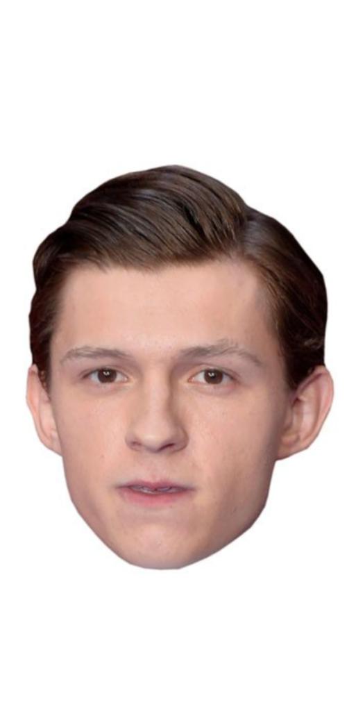 Jason Biggs Celebrity Mask Card Face and Fancy Dress Mask