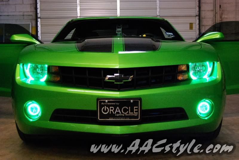 Green halo headlights and fog lights  Pure Muscle  Pinterest