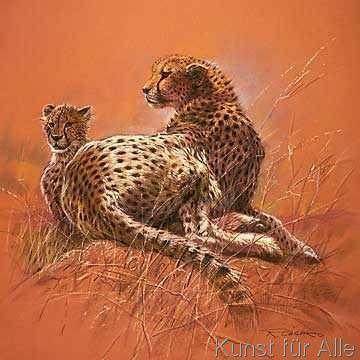 Renato Casaro - Cheetah Mother