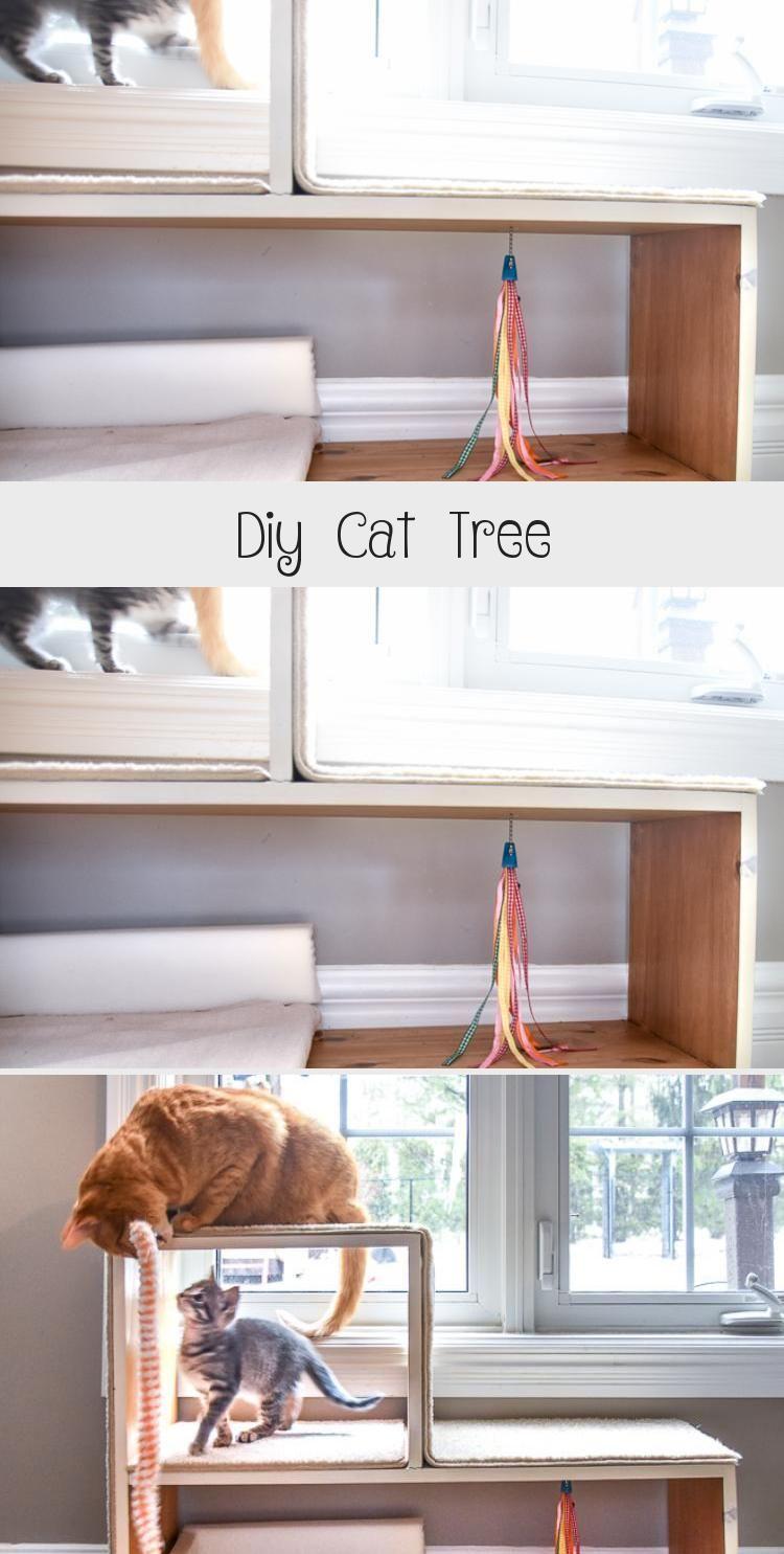 My Blog En Blog In 2020 Diy Cat Tree Diy Cat Scratching Post Cat Diy