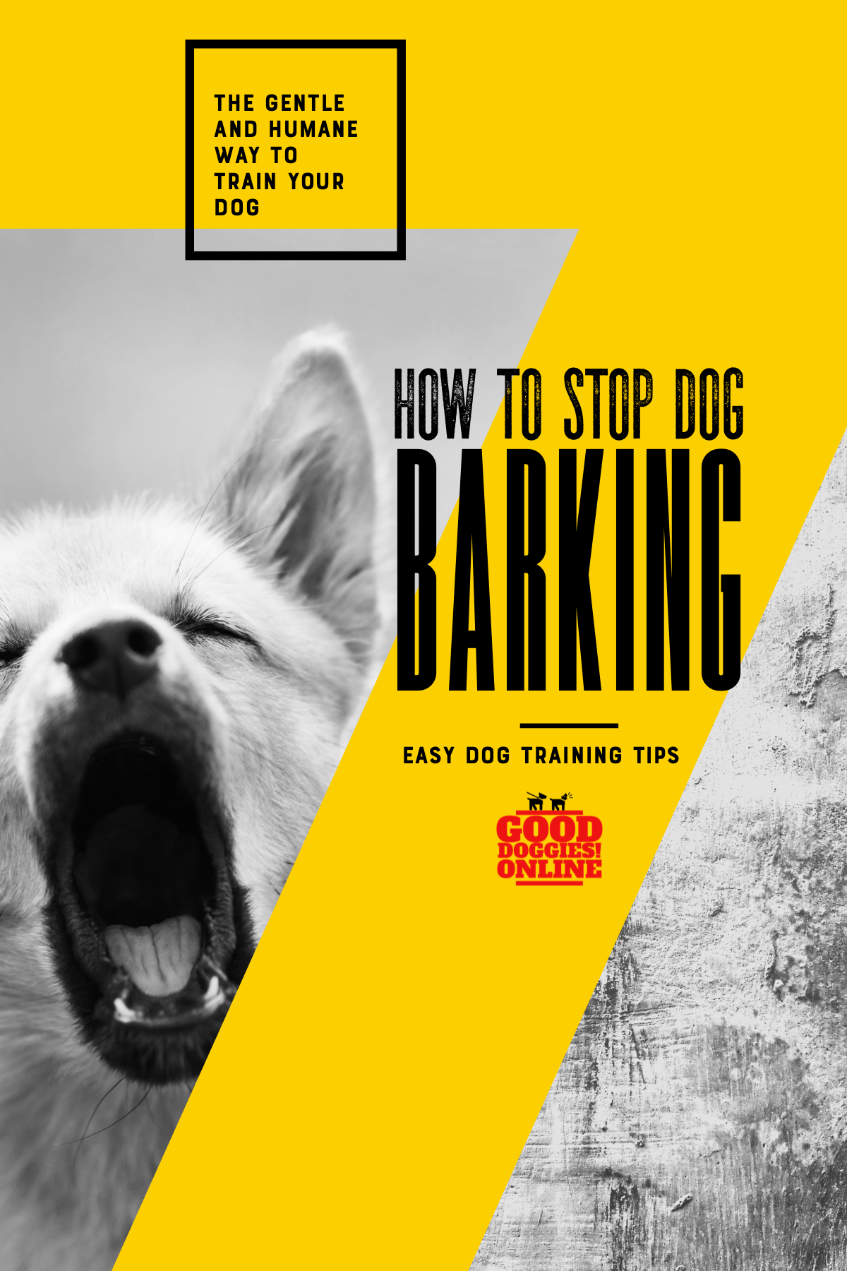 How To Stop A Dog From Barking When You Leave House Good Doggies Online Dog Training Tips Stop Dog Barking Dog Training