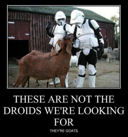 f526ce6735569d480ef5e3563ceed889 these are not the droid s you're looking for stormtroopers