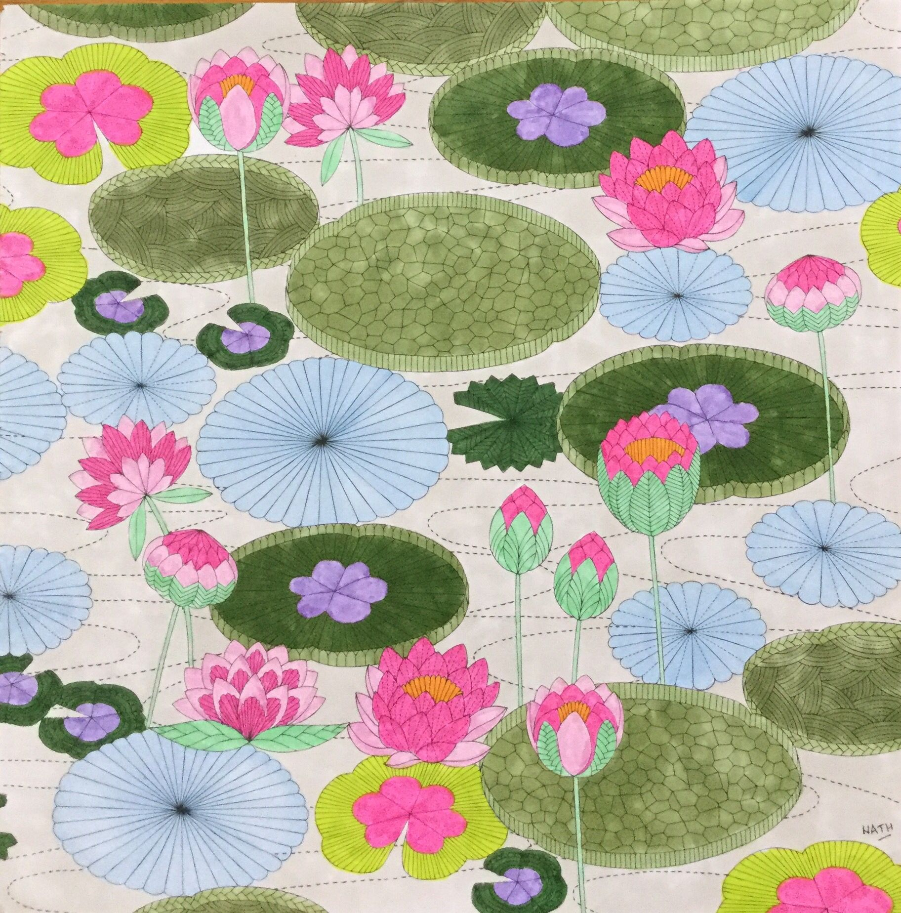 Water lily flower coloring pages - My Colouring Millie Marotta Water Lily N Nuphar