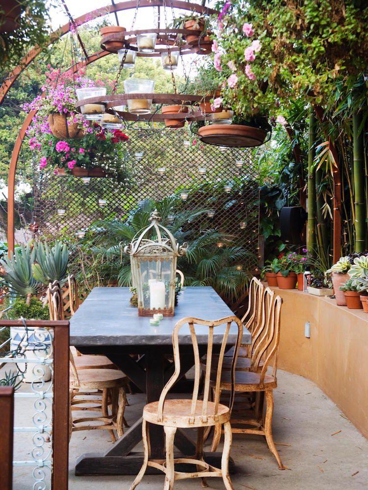 pflanzen gegen muecken hausmittel pergola terrasse holz pflanzen garten pinterest outdoor. Black Bedroom Furniture Sets. Home Design Ideas