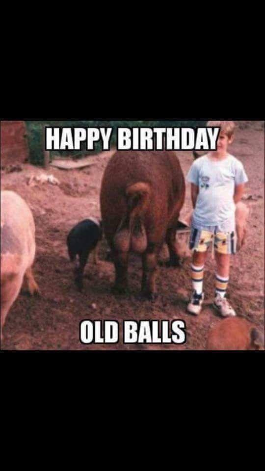 Birthday Funny Happy Birthday Meme Happy Birthday Funny Humorous Happy Birthday Funny