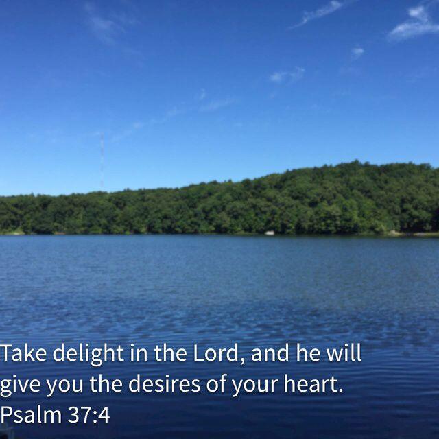 Pin by Lori Beth on Favorite verses Psalms, Bible apps