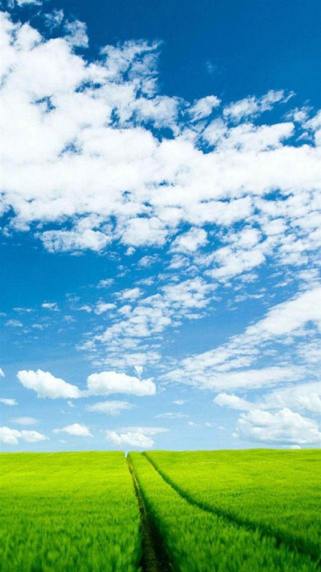 Nature Sunshine Green Corp Field Cloudy Sky iPhone 8