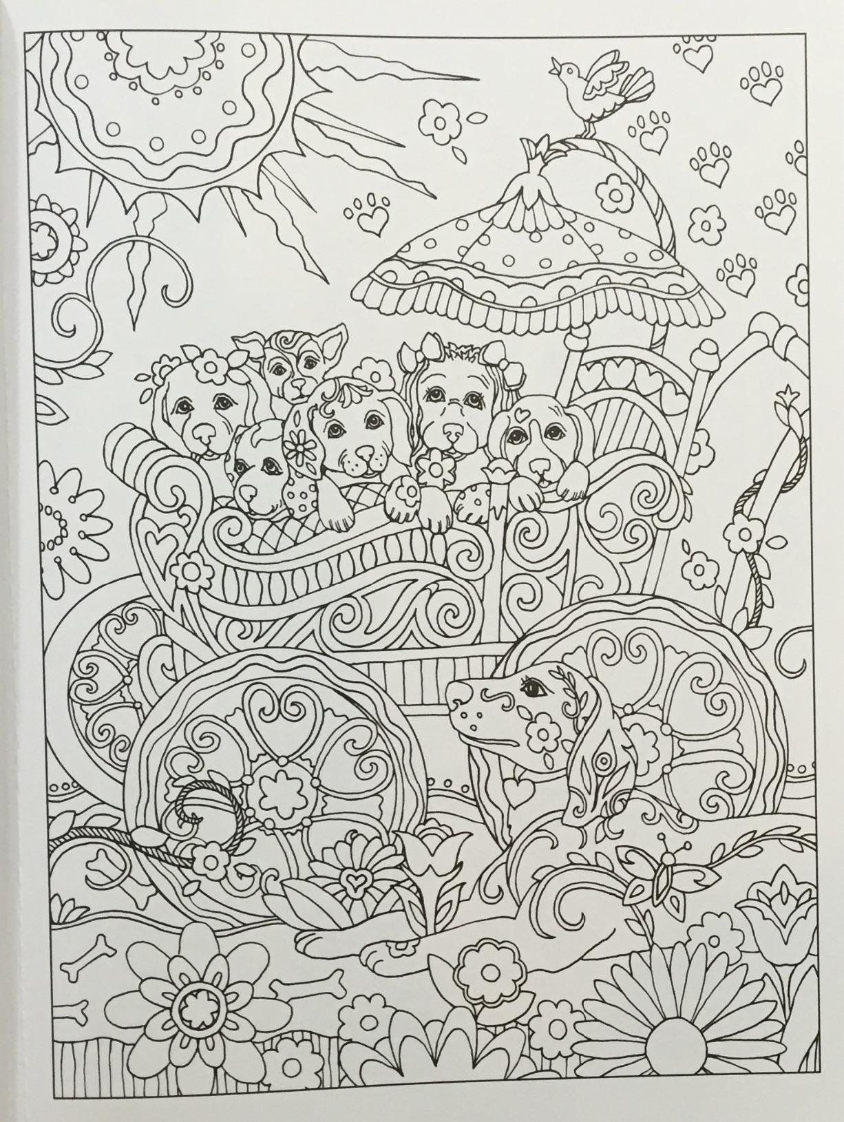 Amazon Prime Now Creative Haven Dazzling Dogs Coloring Book Adult Coloring