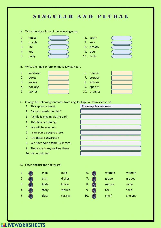Singular and Plural Interactive worksheet (con imágenes