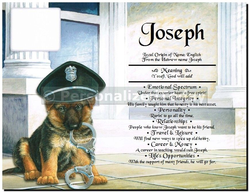 German Shepherd Canine Officer Police Dog With Handcuffs ...