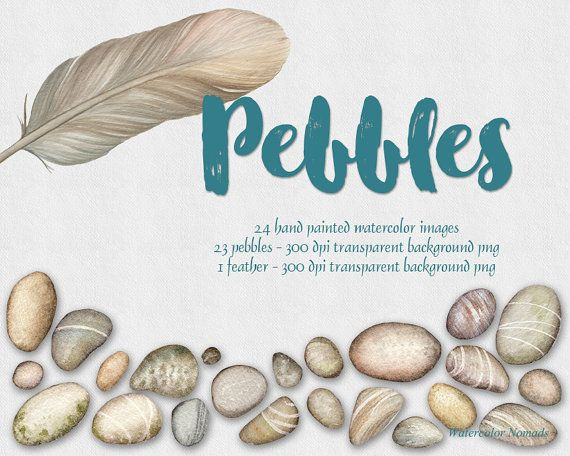 Digital watercolor clipart Pebbles Feather by WatercolorNomads