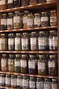 Magia se faz na cozinha!: Doze ervas que se deve ter em casa.