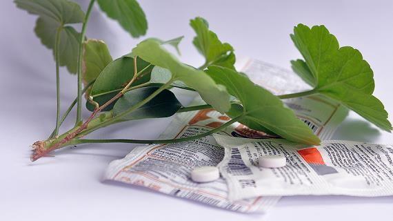 янтарная кислота для замачивания семян