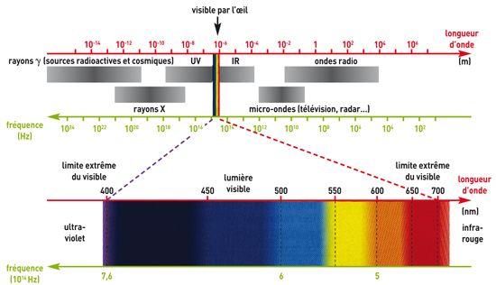 1000 ideas about onde lectromagn tique on pinterest shark animaux sauvag - Onde electromagnetique explication ...