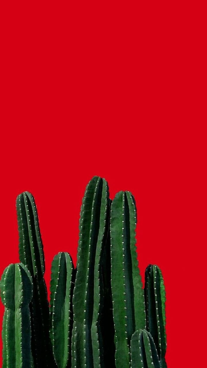 Image about red in Fondos💓 by Raquelín on We Heart It