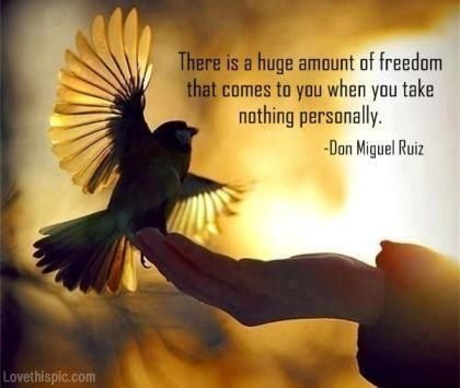 Freedom Life Quotes Quotes Positive Quotes Quote Sky Life Positive Wise  Bird Advice Wisdom Life Lessons