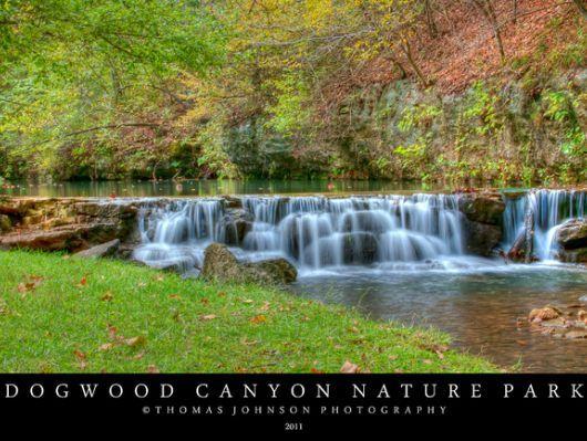 Dogwood Canyon Nature Park Info   Lampe, MO