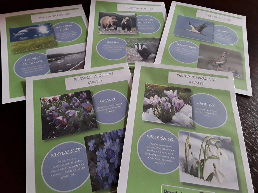 Zwiastuny Wiosny Plansze Przedszkolankowo Book Cover Activities Polaroid Film