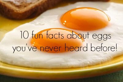 10 fun facts about eggs