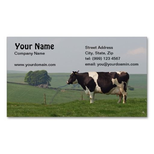 Dairy cow business card cows pinterest business cards dairy cow business card colourmoves