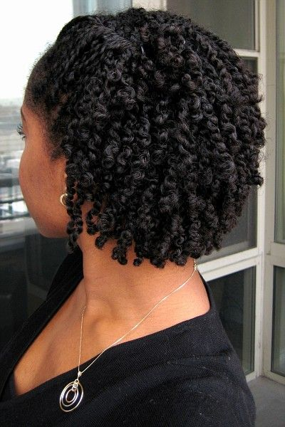For Those Of Your Who Mini Twist Your Own Hair Long Hair Care Forum Hair Styles Twist Braid Hairstyles Twist Hairstyles