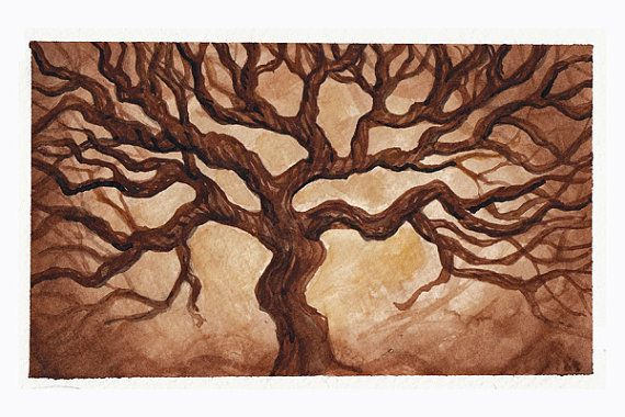 Ancient Oak - Watercolor Painting Giclee Print