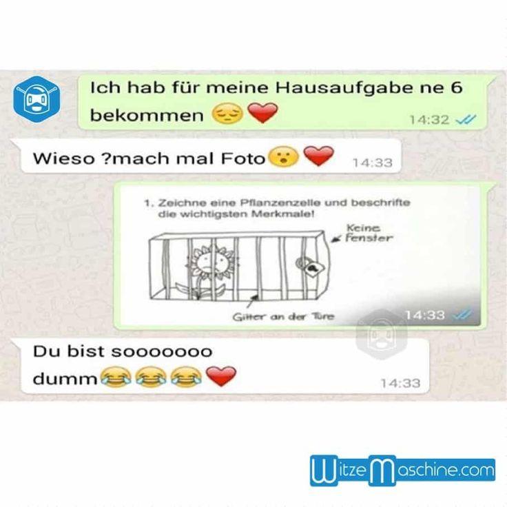 Lustige WhatsApp Bilder und Chat Fails 168 - Bio in der