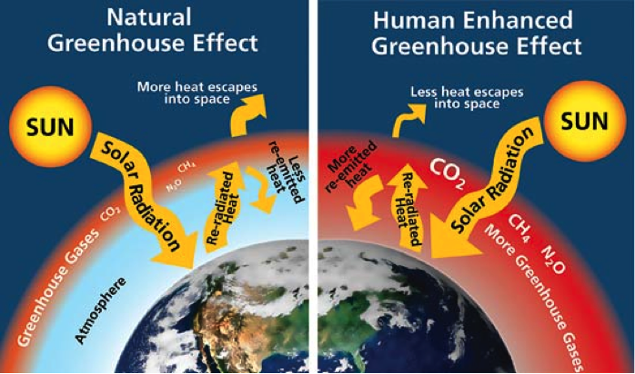 Climate Basics For Kids Center For Climate And Energy Solutions