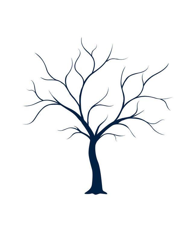 tree trunk branch diagram