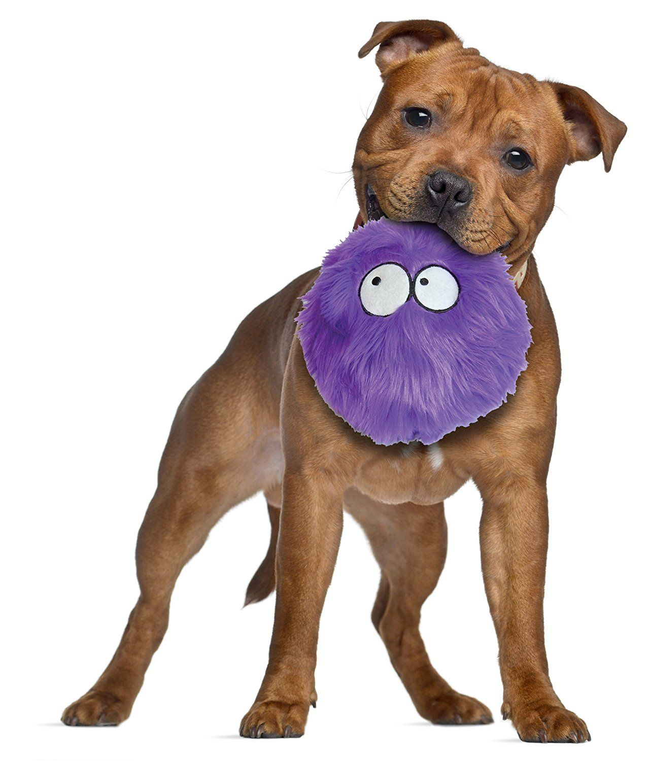 Best Indestructible Dog Toys For Labradors And Other Breeds Cute