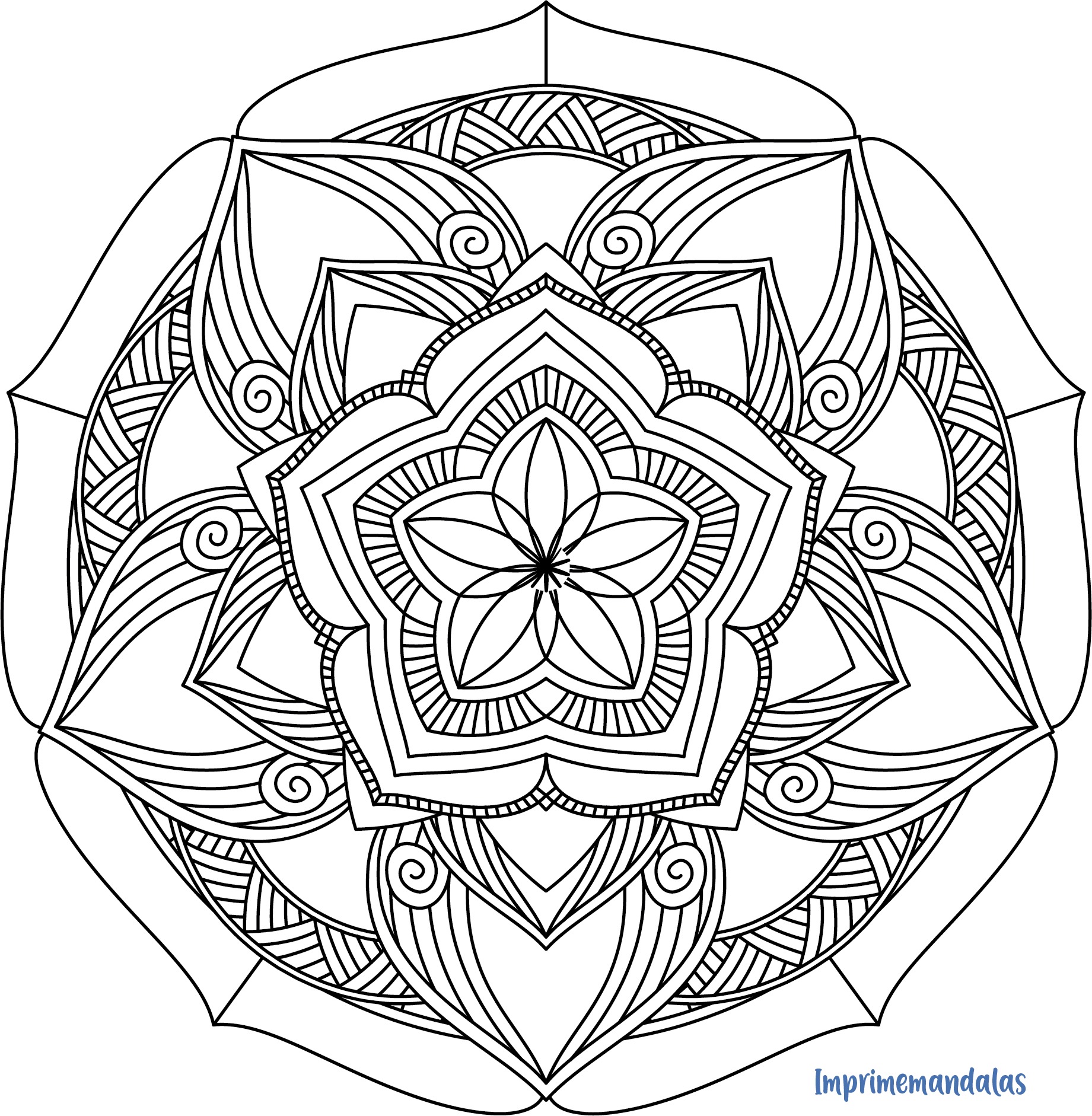 Mandala Zentangle 20 Facil Mandalas Zentangle Diseno Artistico