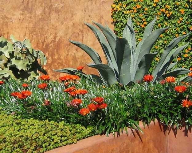 Beautiful Landscaping Ideas and Backyard Designs in Spanish and Italian Styles  Backyard