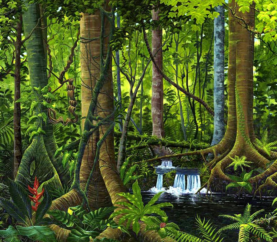 water color rain forest Yahoo Image Search Results