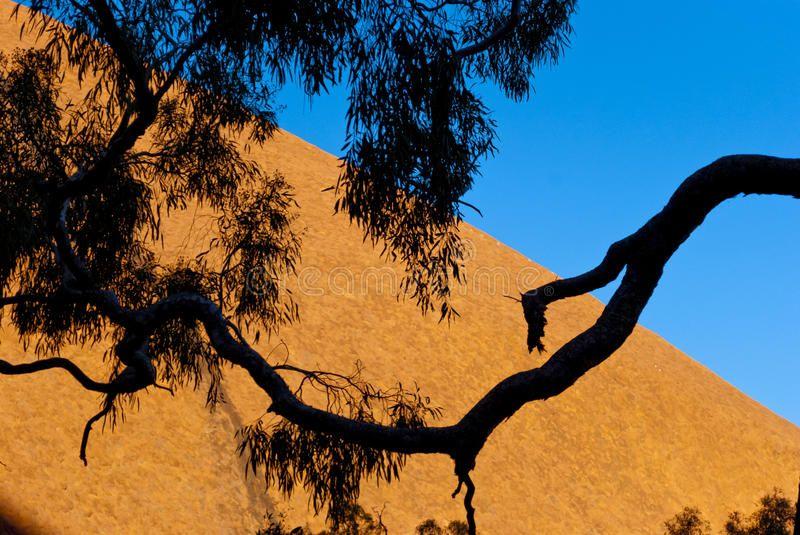 Wild Nature In The Australian Outback Australia Aff Nature
