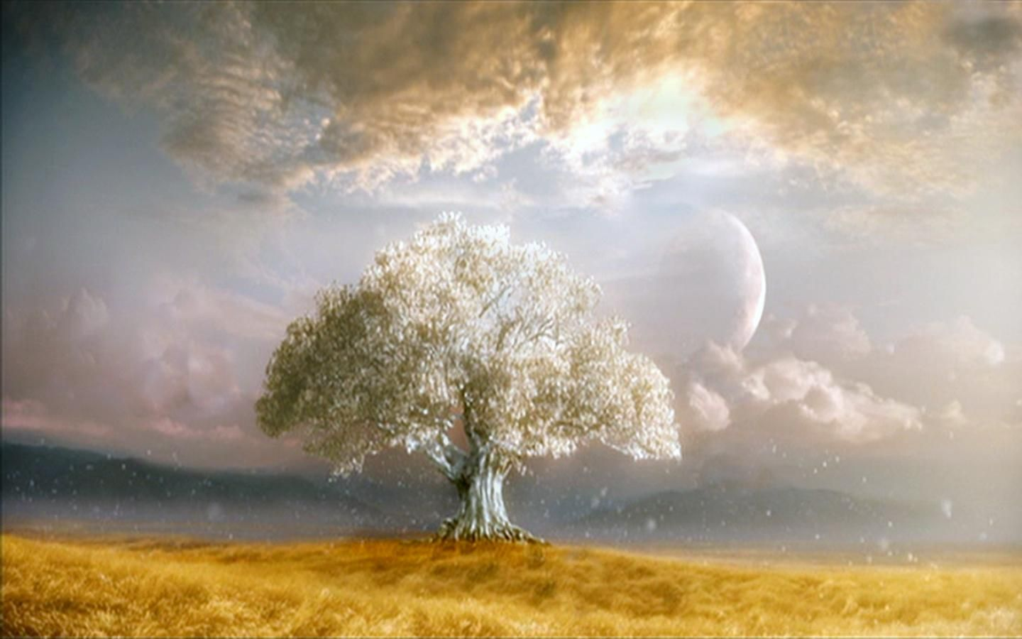 Cool Tree Of Life Wallpaper Hd Download 20067 Wallpaper Celtic Tree Of Life Nature Pictures Tree Of Life