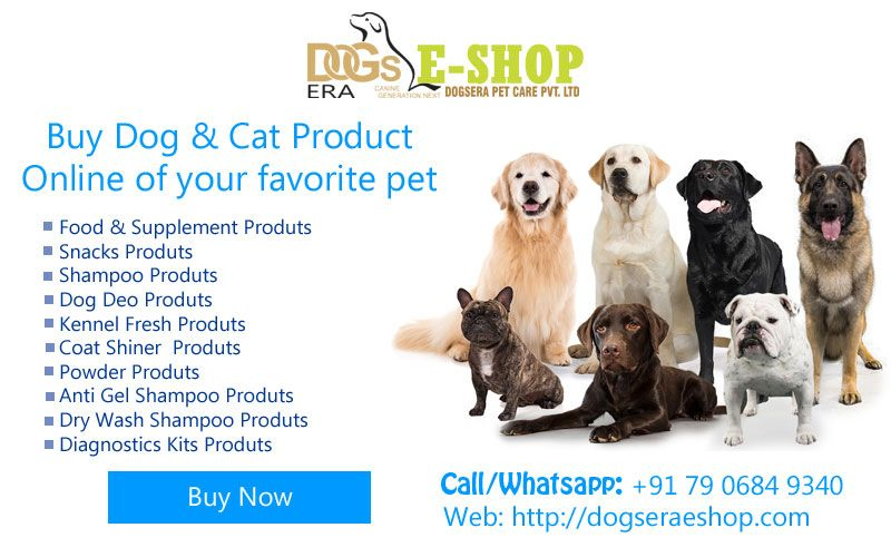 Buy Dog Cat Product Online For Your Favorite Pet In India Dogs Doglovers Dogproduct Doggroomingproduct Dogsnacks Dogsham Buy Dogs Online Dog Cat Dogs